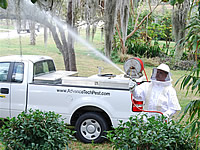 African Killer Bee Control in Florida